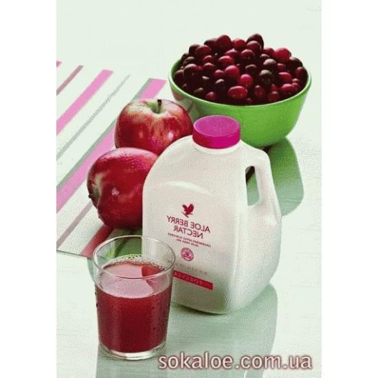 Сок Алоэ ягодный нектар, 1 литр._1